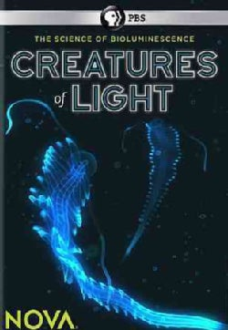 Nova: Creatures of Light (DVD)
