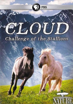 Nature: Cloud: Challenge of the Stallions