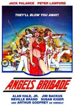 Angels Brigade (DVD)