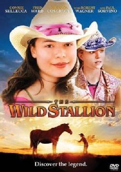 Wild Stallion (DVD)