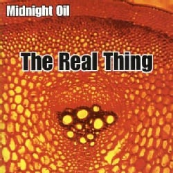 Midnight Oil - Real Thing