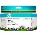 HP 75 Photo Value Pack