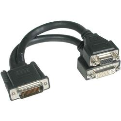 Cables To Go LFH-59 to DVI and VGA Break-out Cable