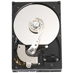 "WD Caviar WD800JD 80 GB 3.5"" Hard Drive"
