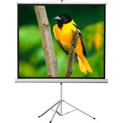 "EluneVision Tripod Projection Screen - 119"" - 1:1 - Surface Mount"