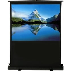 """EluneVision Projection Screen - 100"""" - 4:3 - Surface Mount"""