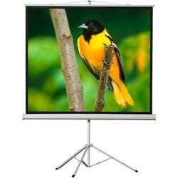 "EluneVision Tripod Projection Screen - 136"" - 1:1 - Surface Mount"