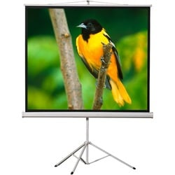 "EluneVision Tripod Projection Screen - 120"" - 4:3 - Surface Mount"