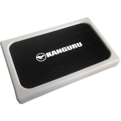 "Kanguru QSSD-2H 256 GB 2.5"" External Solid State Drive"