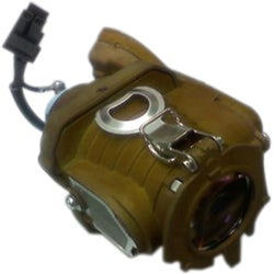 Arclyte InFocus Lamp IN5532 (LAMP #2); IN5533