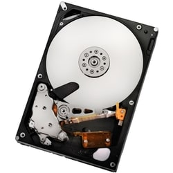 """HGST Ultrastar A7K2000 HUA722050CLA330 500 GB 3.5"""" Internal Hard Driv"""