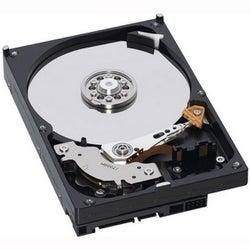 "WD-IMSourcing NOB - AV WD3200AVJS 320 GB 3.5"" Internal Hard Drive"