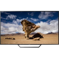 "Sony 48"" Diag ProBravia Full HD Display"