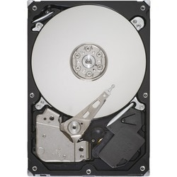 """IMS SPARE - Seagate-IMSourcing Barracuda ST3250310AS 250 GB 3.5"""" Inte"""
