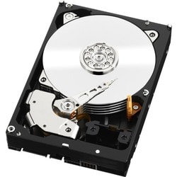 "WD-IMSourcing RE WD2004FBYZ 2 TB 3.5"" Internal Hard Drive"