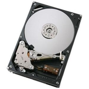 Hitachi Deskstar 7K500 HDS725050KLAT80 Hard Drive (Refurbished)
