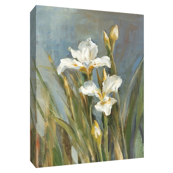 """PTM Images 9-154621 PTM Canvas Collection 10"""" x 8"""" - """"Spring Iris II"""" Giclee Irises Art Print on Canvas"""