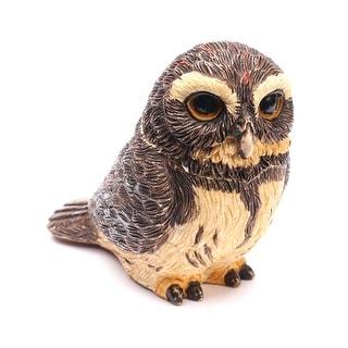 Owl Pot Bellys Box - Pygmy Owl