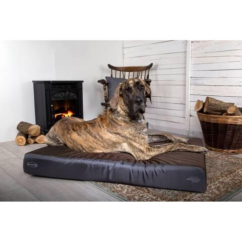 Scruffs Armourdillo Dog Bed - Medium
