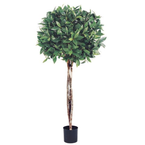 Set of 2 Potted Artificial Bay Leaf Ball Topiaries 3' - 3-to-6-feet