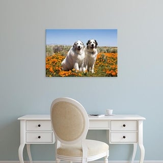 Easy Art Prints Zandria Muench Beraldo's 'Great Pyrenees In Antelope Valley' Premium Canvas Art