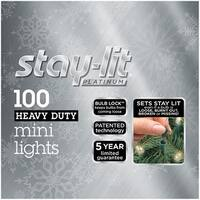 Celebrations 44804-71 Staylit Green Commercial Mini Light Set, 34.25'