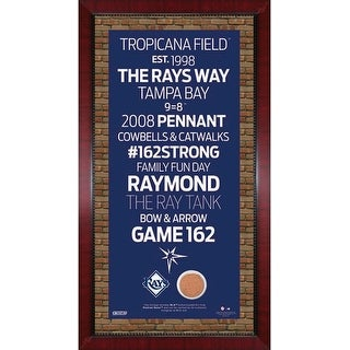 Tampa Bay Rays Tropicana Field 3 Card Frame 14179884