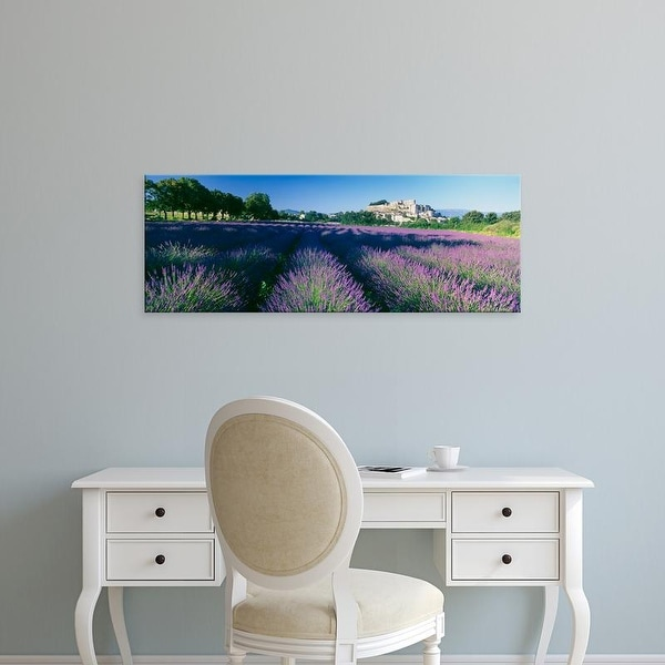 Easy Art Prints Panoramic Images's 'Lavender field, Provence