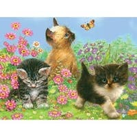 "Kittens - Color Pencil By Number Kit 8.75""X11.75"""