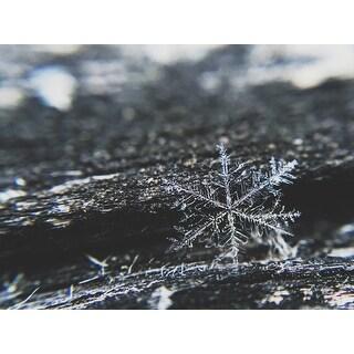 Snowflake Photograph Wall Art Canvas