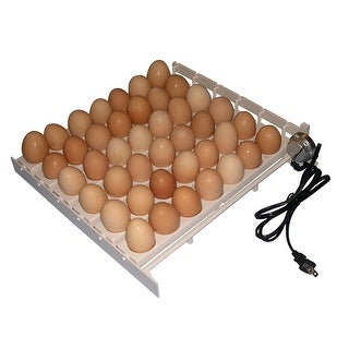 Farm Innovators 3200 Automatic Poultry Chicken Egg Turner with 41 Large Cups