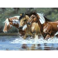 """Heading Upstream - Paint By Number Kit Artist's Collection 12""""X16"""""""