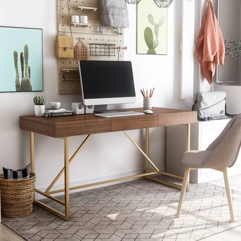 Furniture of America Vaiz Contemporary 60-inch 2-drawer Desk