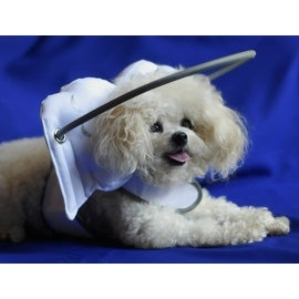 Muffin's Halo for Blind Dogs Angel Wing White