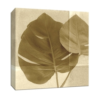 """PTM Images 9-153418  PTM Canvas Collection 12"""" x 12"""" - """"Monstera Leaf II"""" Giclee Leaves Art Print on Canvas"""