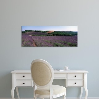 Easy Art Prints Panoramic Images's 'Lavenders Growing In A Field, Provence, France' Premium Canvas Art