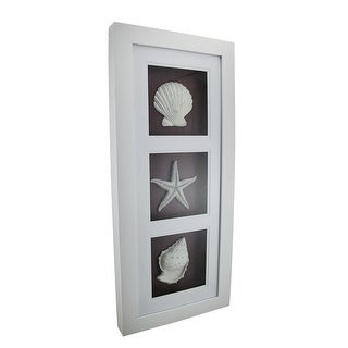 Triple Seashell Ocean Inspired Vertical Framed Shadowbox Wall Hanging 25 Inch
