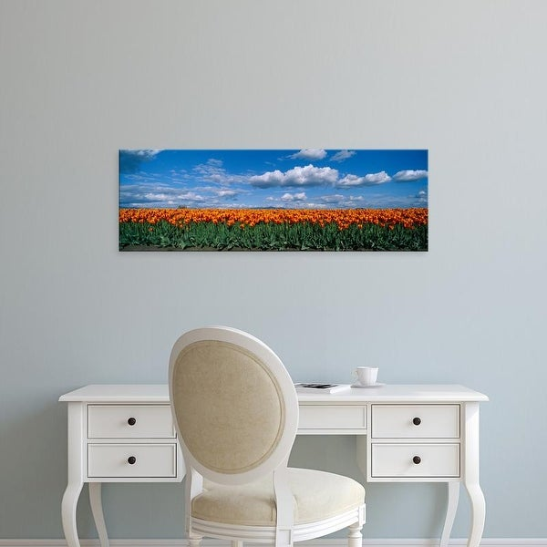 Easy Art Prints Panoramic Images's 'Clouds over a tulip field, Skagit Valley, Washington State, USA' Canvas Art