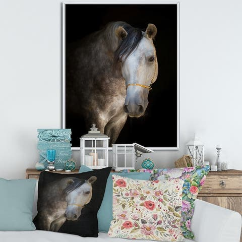 Designart 'Portrait of A White Horse' Farmhouse Framed Canvas Wall Art Print
