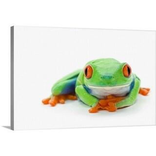 """Red-Eyed Tree Frog (Agalychnis Callidryas)"" Canvas Wall Art"