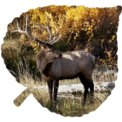 Next Innovations 101421001-ELK Elk on Medium Aspen Leaf Metal Wall Art