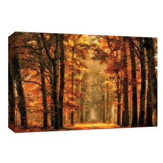 """PTM Images 9-148194  PTM Canvas Collection 8"""" x 10"""" - """"Exit the Portal"""" Giclee Forests Art Print on Canvas"""