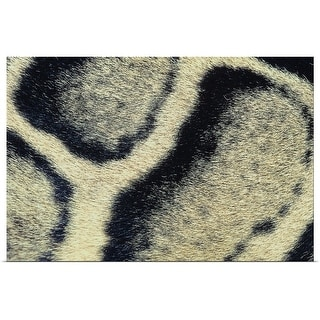 """""""Close up of leopards fur"""" Poster Print"""