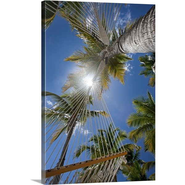 """Upward view through hammocks and palms, White Bay"" Canvas Wall Art"
