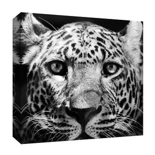 """PTM Images 9-126804  PTM Canvas Collection 12"""" x 12"""" - """"Leopard Black and White"""" Giclee Leopards Art Print on Canvas"""
