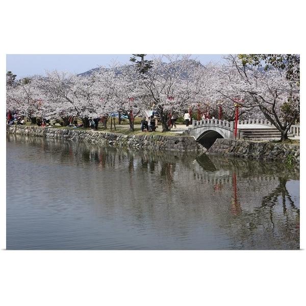 """Cherry Blossoms of Ogi Park, Ureshino, Saga, Japan"" Poster Print"