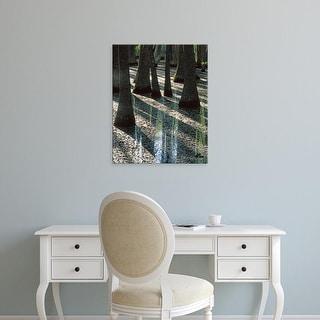 Easy Art Prints Charles Gurche's 'Water Tupelo Trees' Premium Canvas Art