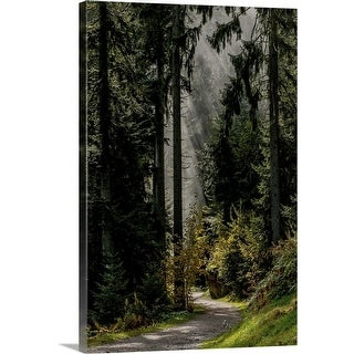 """Light in the Forest"" Canvas Wall Art"