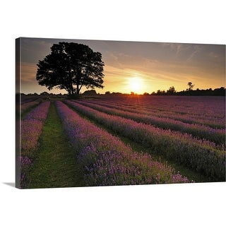 """""""Sunset over lavender field."""" Canvas Wall Art"""