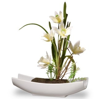 """11"""" Potted White Orchid Flowers - N/A"""